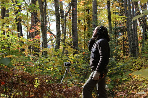 Noise Surveys for Keweenaw Land Trust