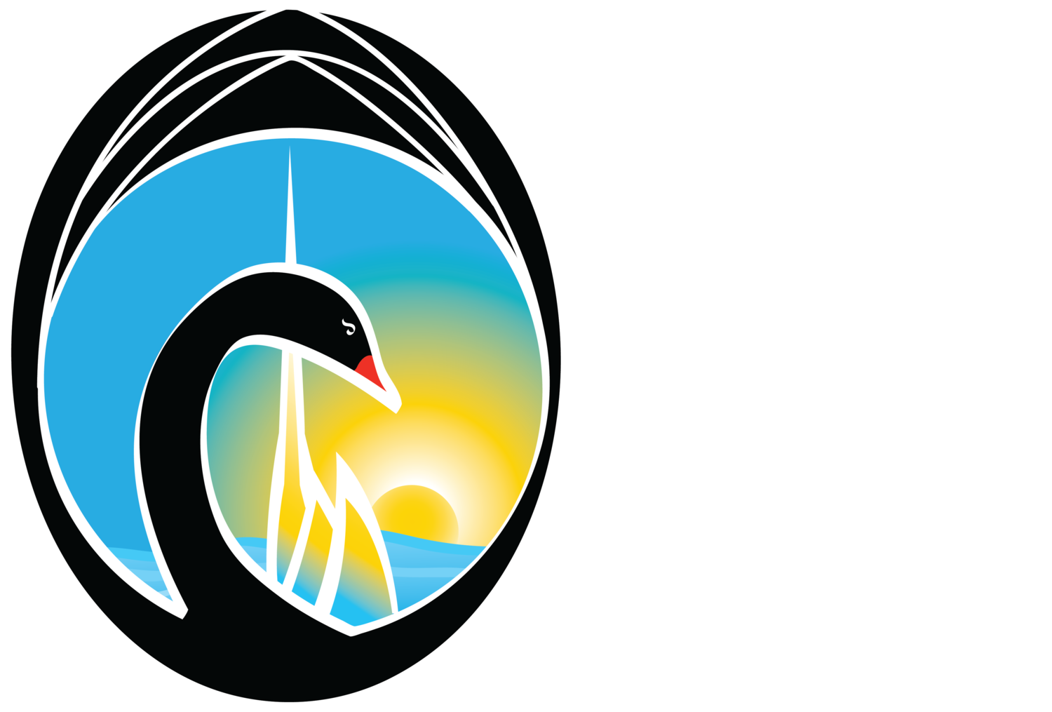 Swan Festival of Lights