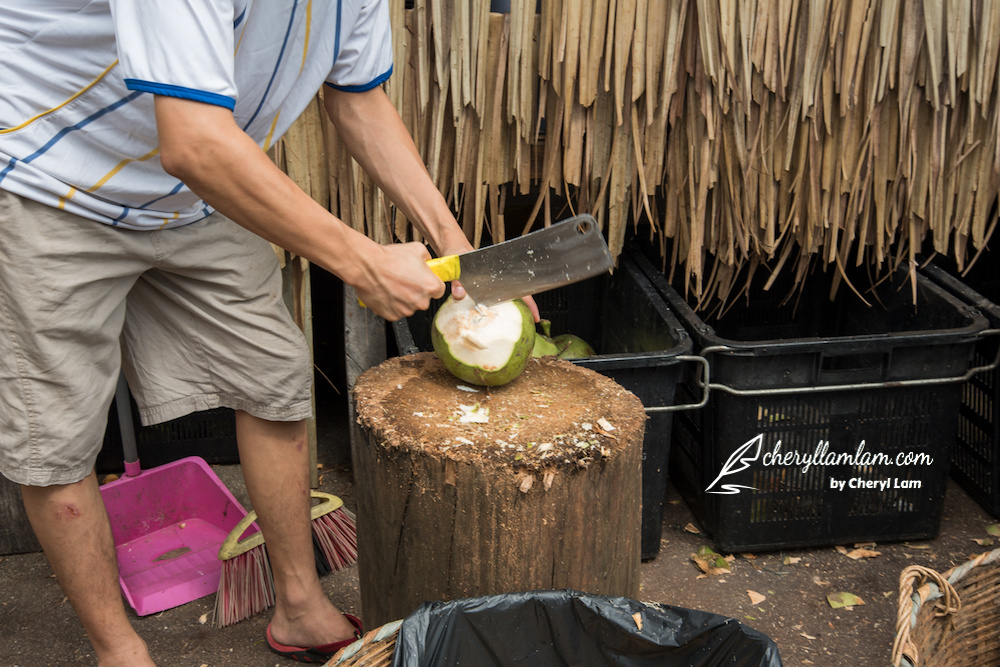 We were welcomed by fresh and sweet coconut juice before feasting on durian!