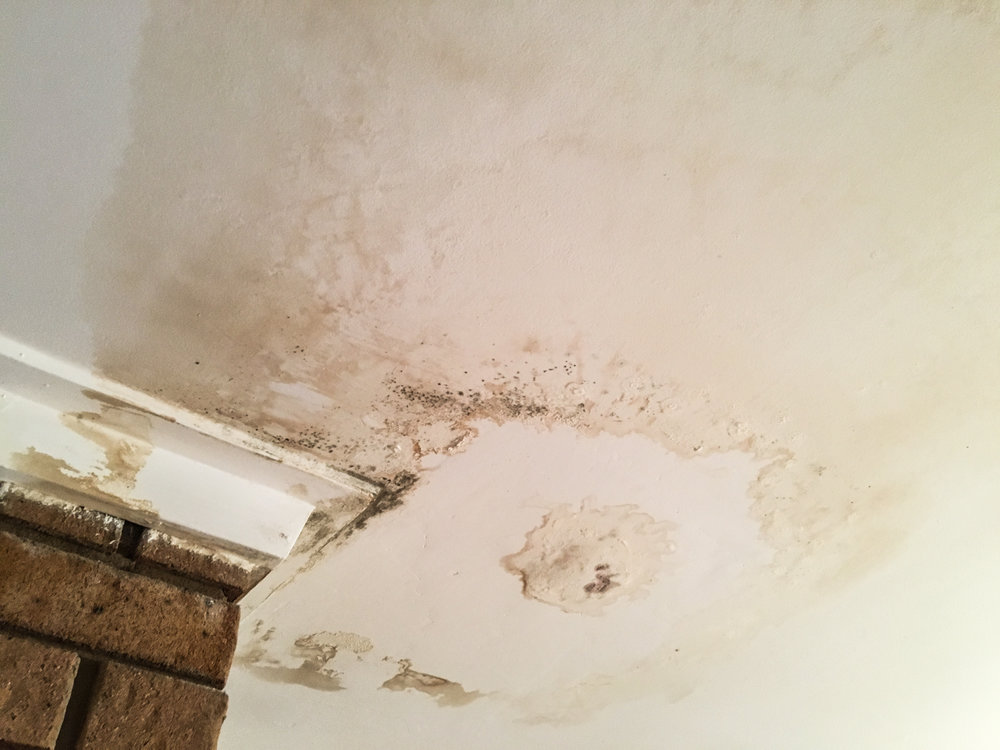 insulmate-water damaged ceilings