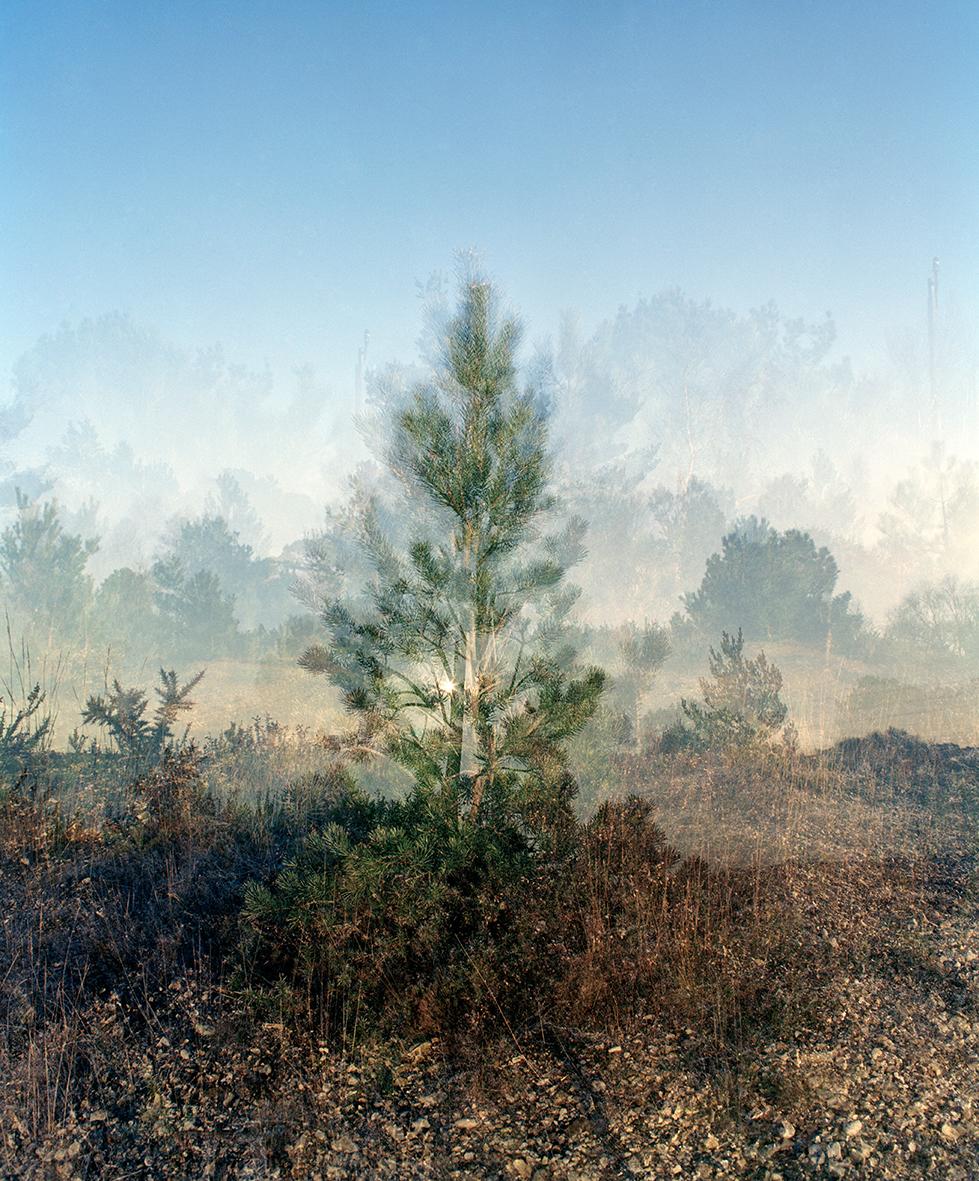 Around the Landscape I, C type print, A2/A1, £300/£470  Enquires:  olia@luminairearts.co.uk