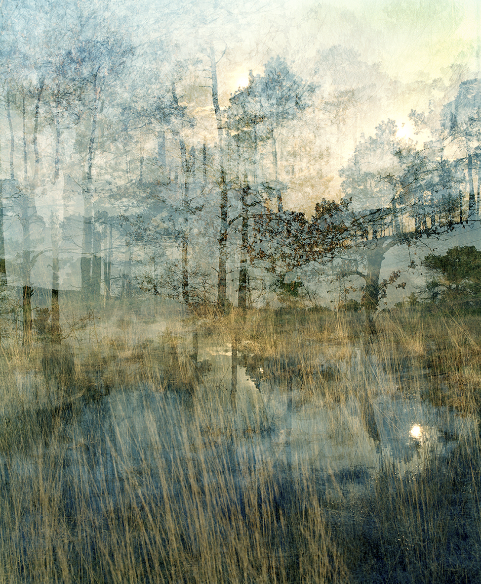 Around the Landscape II, C type print, A2/A1, £300/470  Enquires:  olia@luminairearts.co.uk