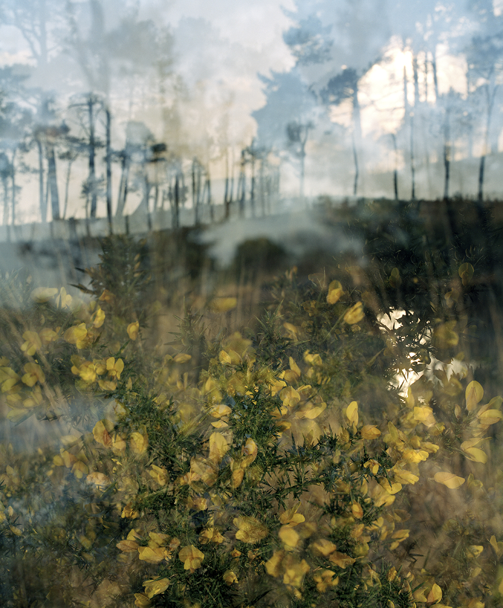 Around the Landscape III, C type print, A2/A1, £300/£470  Enquires:  olia@luminairearts.co.uk