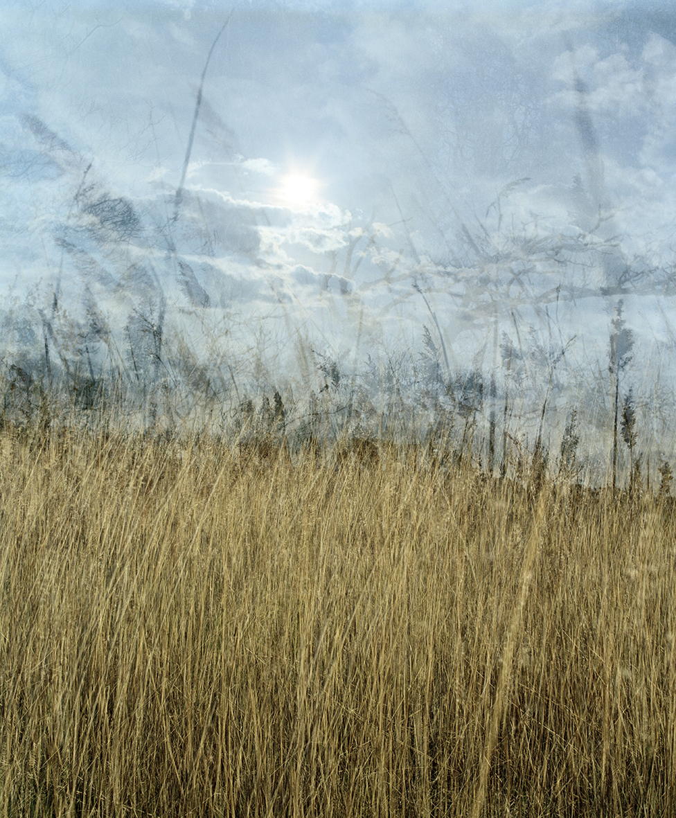 Around the Landscape IV, C type print, A2/A1, £300/£470  Enquires:  olia@luminairearts.co.uk