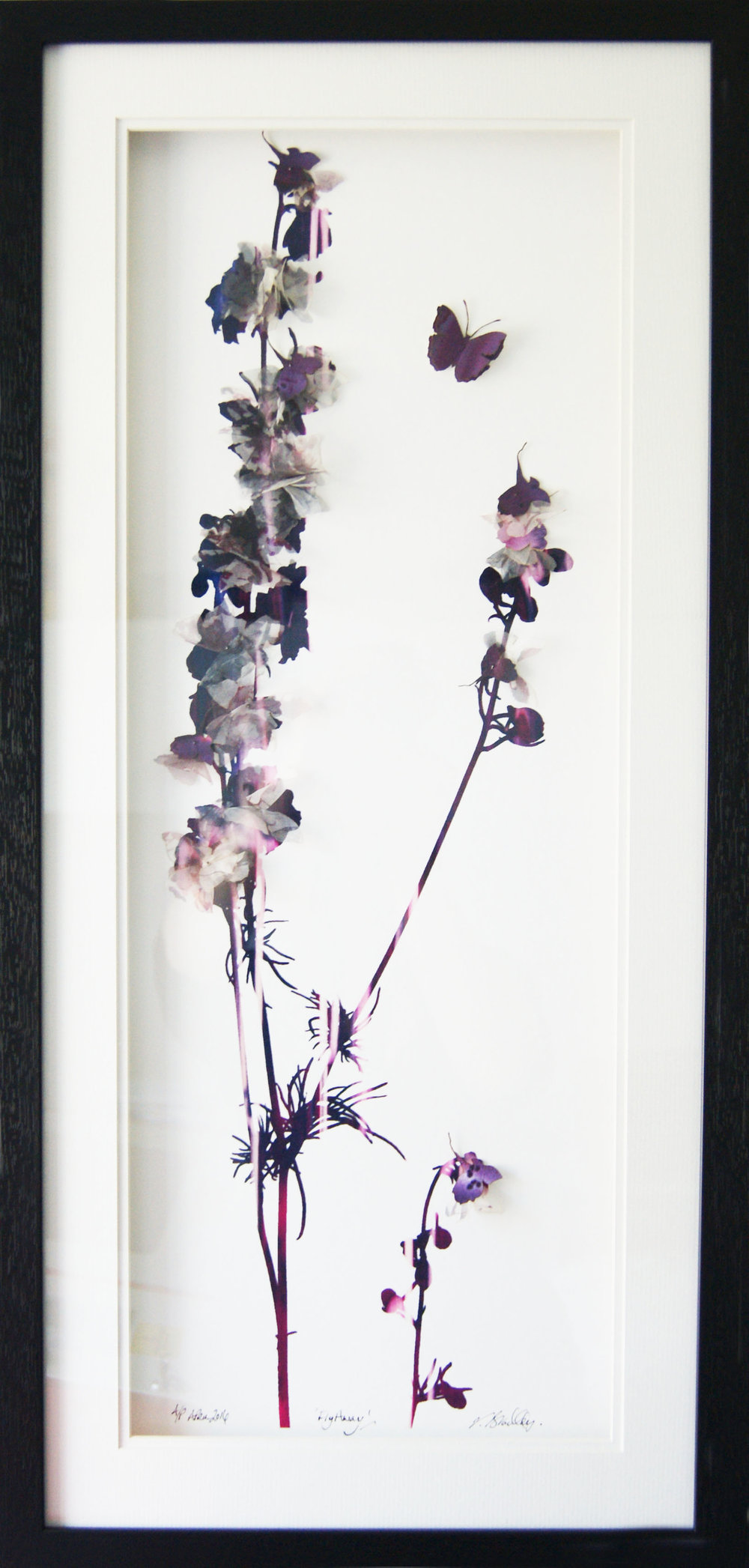 'Fly Away' (33x73cm)£320.00. Visit the  shop  on our website to purchase.