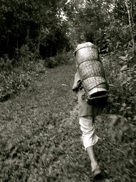 Margaret Bong / Malaysia / 2006 / 15mins  TUDTU follows Ken, a Kelabit boy who lives with his family in a Kelabit Highlands, collecting salt.