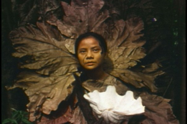 """Auraeus Solito / Philippines / 1995 / 9mins  Suring retreats to the forest & casts a spell of Absolute Beauty, where she befriends the Kuk-ok, a shape-shifter. ( Based on a scene from the play """"The Brief Lifespan of Fire"""" about Palawan indigenous myths )"""