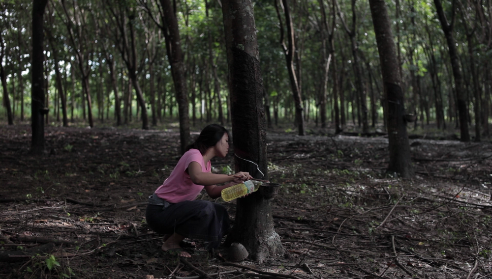 Chaweng Chaiyawan | Thailand | 2017 | 18 mins  So and Khin, a married couple from Myanmar works on a southern Thai rubber plantation. Facing the struggles of labour exploitation and local persecution, their harrowing situation is staged in the midst of political unrest between the three southern Thai provinces.