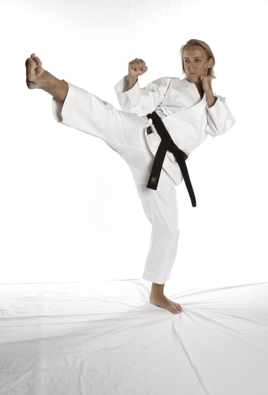 UFC_gi kick.jpg