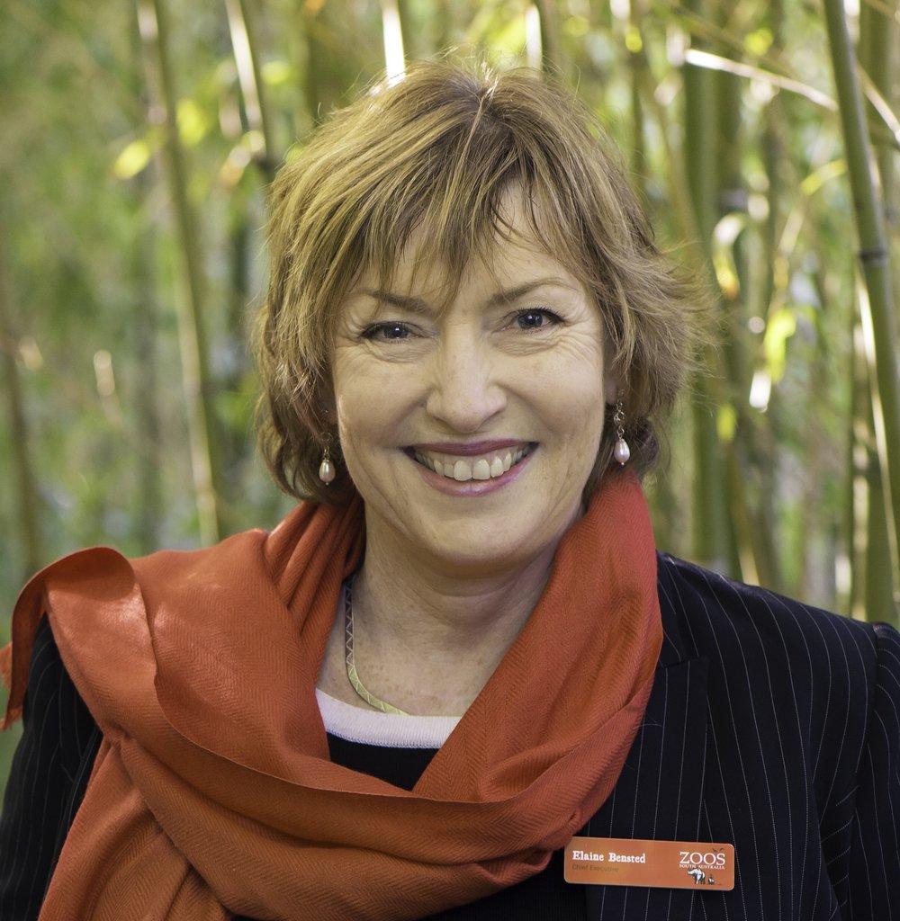 Elaine Bensted, Chief Executive Zoos SA