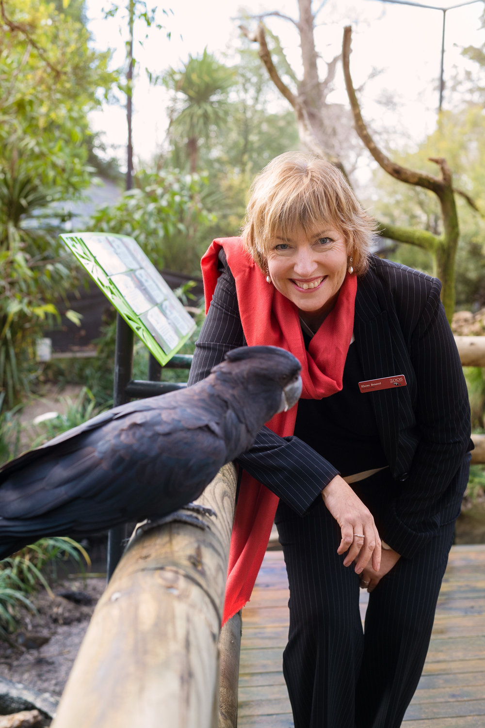 Elaine Bensted - CEO ZoosSA - The Mentor List Podcast