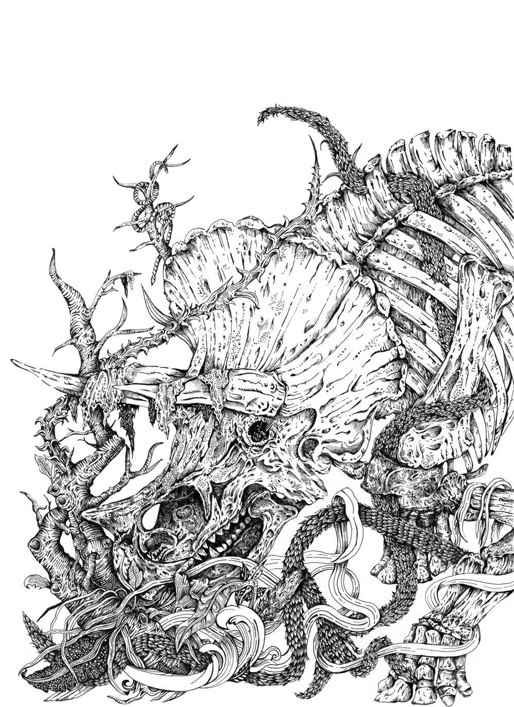 triceratopssite.jpg