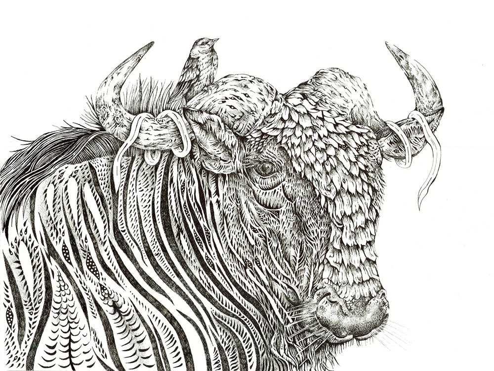 wildebeestsmall.jpg