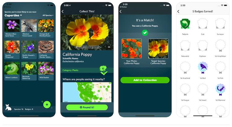 seek-app-2.png