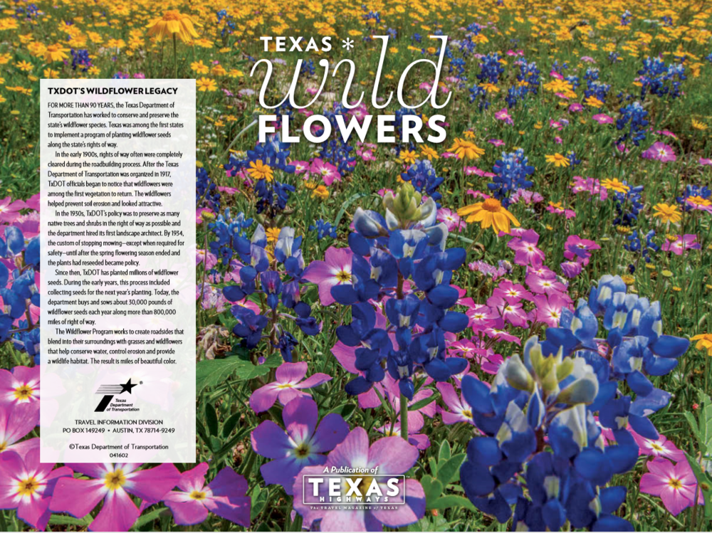 Texas Wildflowers Guide by Texas Travel Information Division picture.PNG