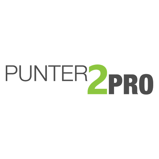 Punter2Pro logo