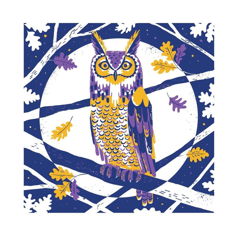 Chris Dickason Hoot Owl