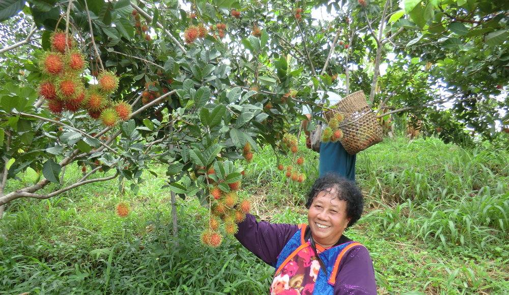 Image courtesy of Life Development Center