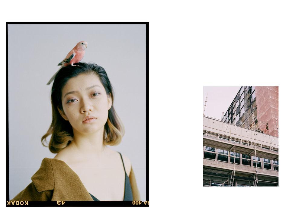 Bird_Kathleen_02.jpg