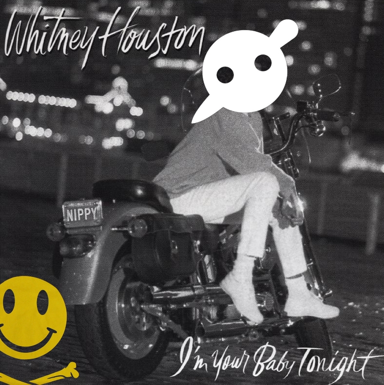 A dubstep mashup of Whitney Houston and a few other electro/dubstep tracks. Listen & download here: