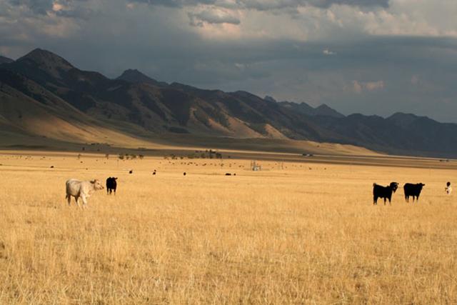 Range land in Montana. Image via U.S. Geological Survey.