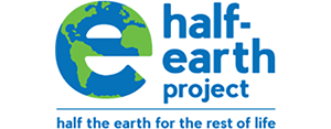 half-earth-300x175.png