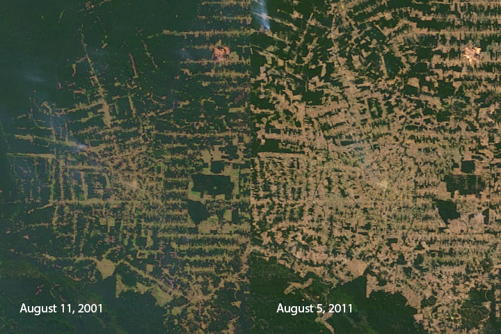Deforestation in the Amazon, 2001 and 2011. Images courtesy NASA.