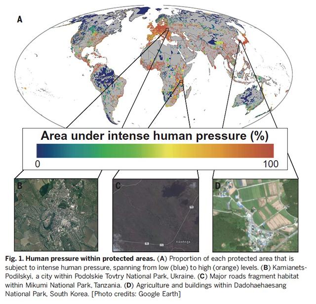 Science article-640w.jpg