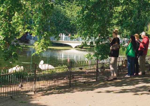 London's Green Park, located right next to Buckingham Palace, is one of eight former royal hunting grounds that were converted into a total of 4,882 acres of public green space.