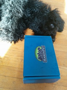 puppy with blue box bundle from hardypet