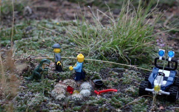 lego figures in miniature cactus