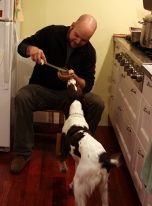 sharpening knife with dog