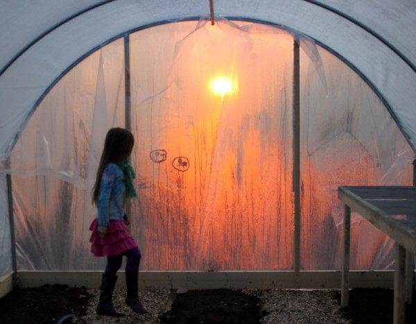 sunset hoop house