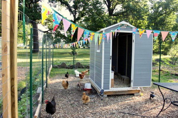 chicken coop oilcloth bunting