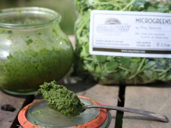 pea shoot pesto recipe