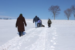 hill at stahl farm