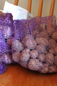 seed potatoes for columbus ohio