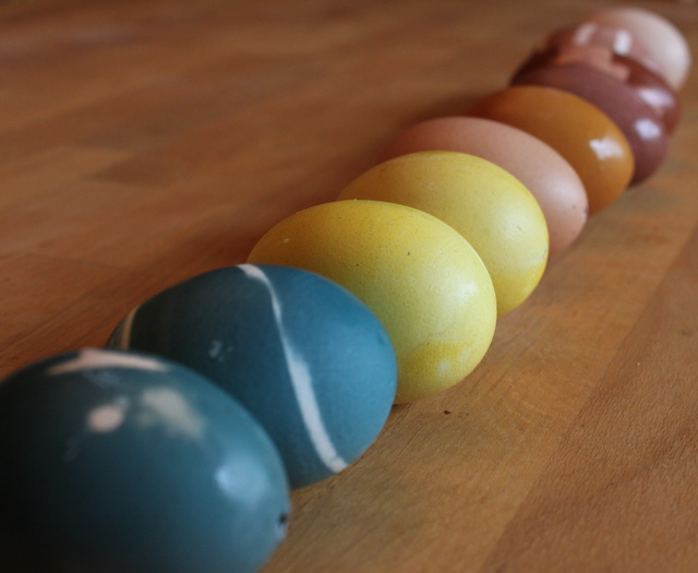 rainbow of naturally dyed eggs