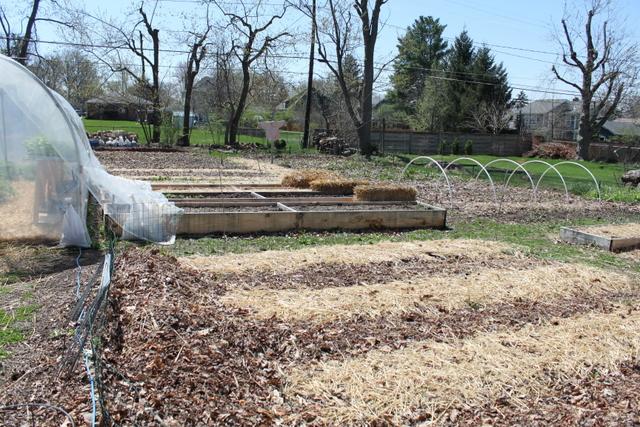 swainway urban farm beds