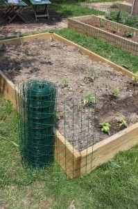 roll fencing wrapping around a raised bed