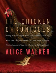 chicken chronicles alice walker