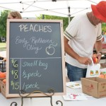 branstool peaches at new albany farmers market