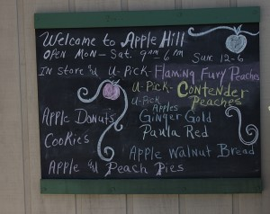 apple hill orchard chalkboard ohio