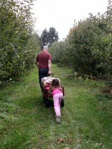 pushing apple cart