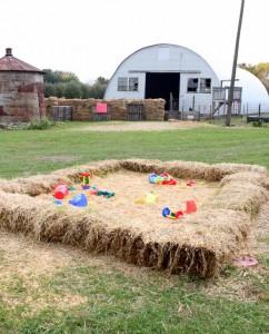corn and maze