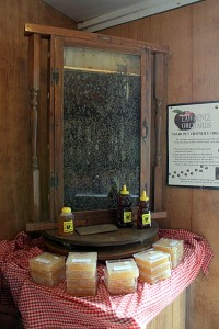 observation hive at lawrence orchards