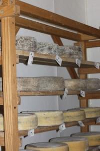 kokoboreggo cheeses aging