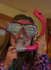 snorkel in the living room