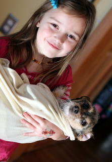 child holding freshly bathed dog