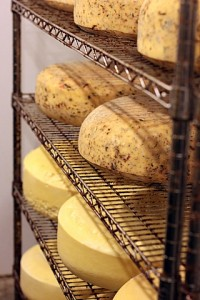 cheese aging